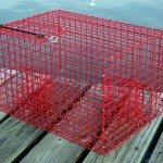 offshore-pinfish-traps-600x400