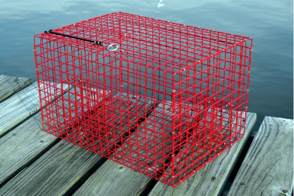 Image gallery pinfish traps for Live fish basket